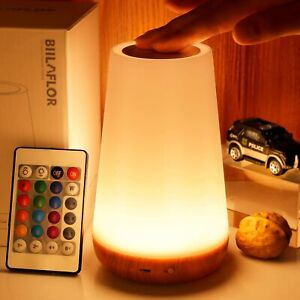 Bedside Table Lamp, 13 Colours LED Touch Light With Remote USB Charging Dimmable