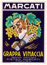 Cancian-MARCATI-Grappa Vinaccia-Bacco- Besson - 5° Elemento - Le cinquièm élémen