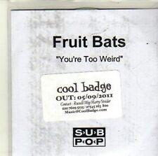 (CI349) Fruit Bats, You're Too Weird - 2011 DJ CD