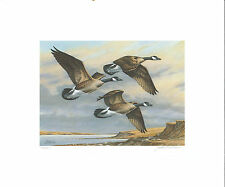 SOUTH DAKOTA  #4 1986  DUCK STAMP PRINT CANADA GEESE by John Wilson