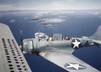 WW2  Photo WWII US Navy Dauntless SBD Dive Bombers 1942 World War Two / 5387