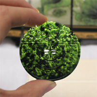 Round Chinese Natural Black Green Dark Jade Pendant Dragon Good Lucky Amulet
