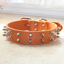 "Orange Leather 1.2"" Wide 2 Rows Spiked Studded Pet Dog Collar Big Dog Pitbull"
