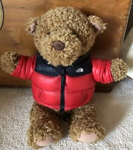 The North Face Teddy Bear with jacket and sweatshirt