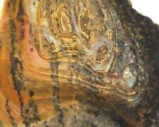 """Chapenite Slab Fort Irwin California Lapidary Rock 4.1"""" X 4"""" X1/4"""" 171 Grams"""