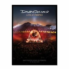 DAVID GILMOUR PINK FLOYD LIVE AT POMPEII RARE LIMITED LITHOGRAPH /200 -AUTHENTIC
