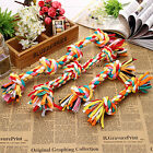 NEW Colorful Pet Chew Knot Pick Toys Cotton Braided Bone Rope Puppy Dog 4 Sizes
