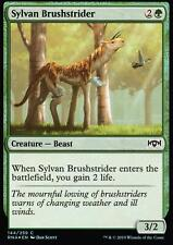 Sylvan Brushstrider FOIL | NM/M | Ravnica Allegiance | Magic MTG