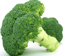 """Broccoli Seeds""""Di Cicco Early"""" (Approx 300 Seeds)Popular Garden Vegetable"""