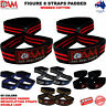 FIGURE 8 WEIGHT LIFTING STRENGTH GYM BAR STRAPS NEOPRENE PADDED WRAPS STRAPS DAM