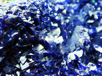Fancy Double-face AZURITE Crystal Cluster on Green MALACHITE Mineral Specimen