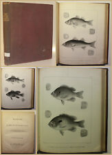 Storer A History of the Fishes of Massachusetts 1867 Ichtyologie Fischkunde xy