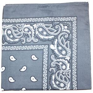 Pack of 10 Daily Basic 100% Polyester 22 x 22 Paisley Printed Bandanas