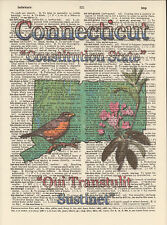 Connecticut State Map Symbols Altered Art Print Upcycled Vintage Dictionary Page