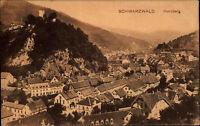 Hornberg Schwarzwald Baden Württemberg s/w AK ~1910 Gesamtansicht ungelaufen