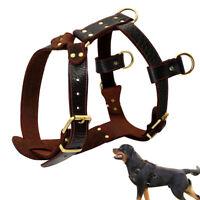Heavy Duty Genuine Leather Dog Harness Strap Vest for Medium Big Dogs Rottweiler