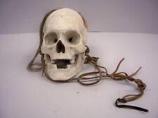 Scorpion King Human Skull - Certified Movie Prop