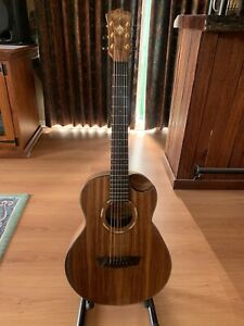 Washburn acoustic Comfort Mini Traveller
