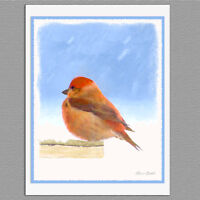 6 Scarlet Tanager Wild Bird Blank Art Note Greeting Cards