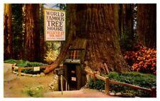 World Famous Tree house Redwood Highway California RPPC