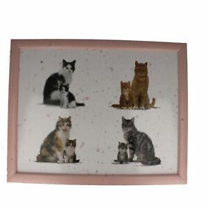 Lesser & Pavey Cat Stampa Laptop Vassoio LP26426