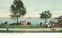 SALEM MA – The Willows – udb (pre 1908)