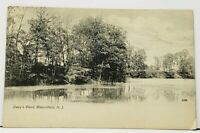 Nj Bloomfield Davy's Pond New Jersey udb Postcard I8