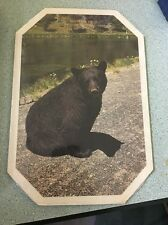 Souvenir Yellowstone National Park black bear table mat hot pad vintage NOS