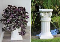 Garden Ornament Plant Pot Stand Display Decoration Outdoor Indoor Home Decor