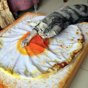FM_ FJ- WR_ CREATIVE PET CAT DOG WARM SOFT FRIED EGG PLUSH BLANKET BED MAT CUSHI