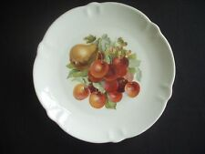"""9.5"""" DECORATIVE PLATE WITH FRUIT PATTTERN"""