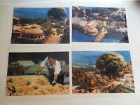 Rare Animal Kingdom Lot of (4) Model Media Press Photo Walt Disney World WDI