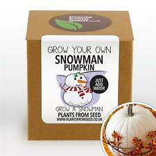 Plants From Seed - Grow Your Own Snowman White Pumpkin Plant Kit