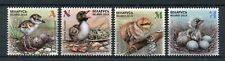 Belarus 2018 MNH Chicks Children's Philately 4v Set Birds Stamps