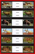 Gibraltar 2012 ANIMALS gutter PAIRS SC#1353-58 MNH FV£5.04/CV$16.50 CATS RHINO