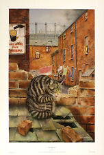 "PAUL YEOMANS ""Washing Day"" tabby cat BROWSE OUR SHOP! SIZE:51cm x 33cm  RARE"