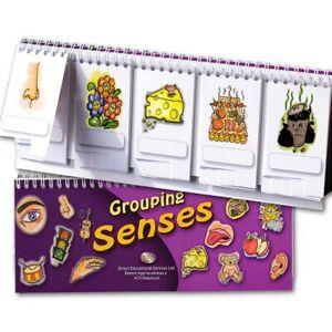 Eduk8 Senses Tabbed Flipped Book - Kids Children's Educational Toys