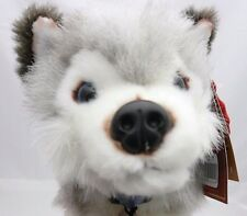 Keel Toys chien peluche husky yeux bleus fourure grise et blanche  25 cm
