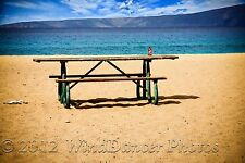 Early Morning at the Beach- 12 x 18 Fine Art Photo - Picnic - Quirky Beach Photo