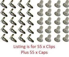 Door Trim Clip Fitting Kit (55 clips +55  caps) Holden, Torana, Commodore
