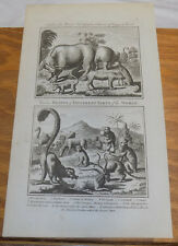 1778 Antique Animal Print///BEASTS OF DIFFERENT PARTS OF THE WORLD///by Moore