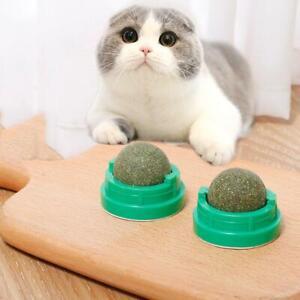 Pet Cat Kitten Treat Toys Catnip Refillable Teeth Cleaning Ball Cat S U5U7