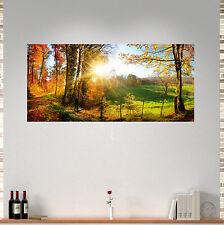 Wechselscheibe LP3 Wechselbild 56x26cm passende für IKEA Lampe Gyllen