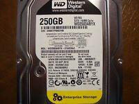 """Western Digital WD2503ABYX-01WERA2 DCM:HGRNKTJCG 250gb 3.5"""" Sata HDD"""