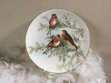Coalport bird decor plate with Linnet by John Gould, plate no.4, bird plate