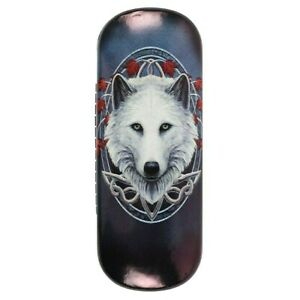 Guardian of the Fall Glasses Case