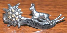 Chiemsee Germany Metal Pin Souviner Approximately 2 Inches (Pin / Lapel / Brooch