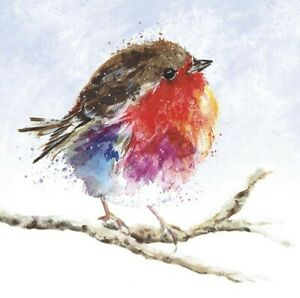 Charity Christmas Cards ~ 10 Pack with Envelopes ~ Fluffy Robin