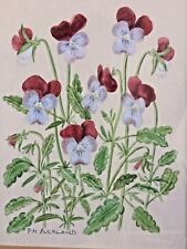 VINTAGE PANSY FLOWER WATER COLOUR PAINTING SIGNED
