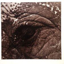 """Grand Tirage argentique signé de Michel COMTE (1954)"""",Elephant eye"""".60x50cm."""
